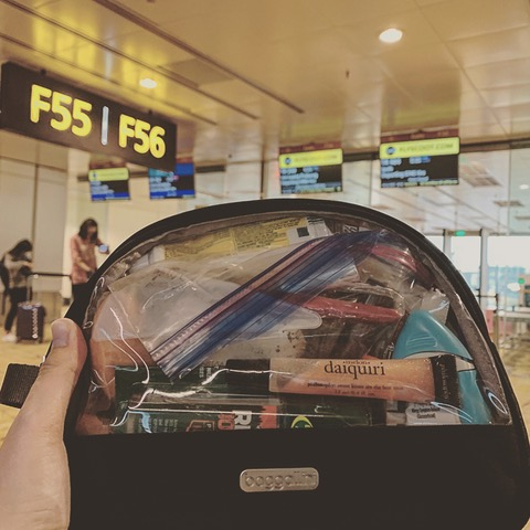 My Baggallini Large Clear Cosmetic Case passing security at Singapore Airport