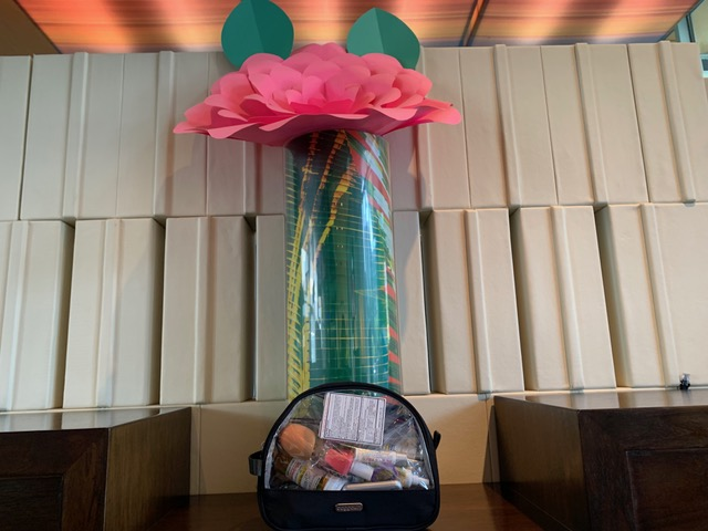 My Baggallini Large Clear Cosmetic Case in the Aloft San Fran Airport Hotel
